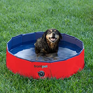 dog splash pool