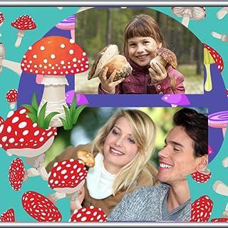 Collage de fotos de hongos