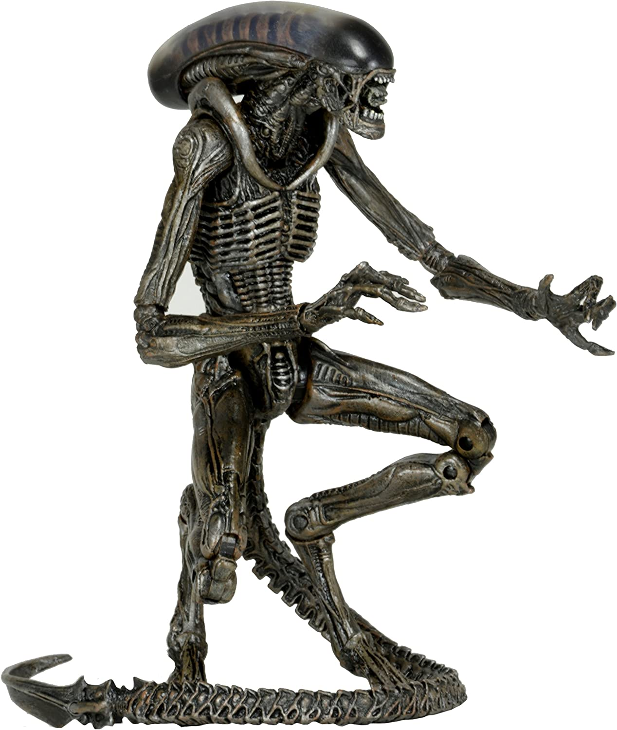 Alien 3 - Dog Alien grau Series 8 Action Figure B01D32DVLG  Einzigartig     | Neues Produkt