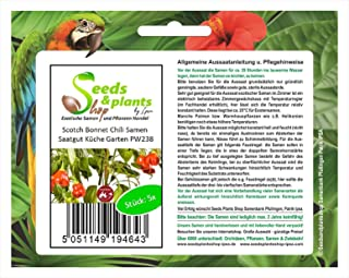 Stk - 5x Scotch Bonnet Chili Samen Saatgut Küche Garten PW238 - Seeds Plants Shop Samenbank Pfullingen Patrik Ipsa