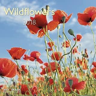 2018 Wildflowers Art & Image 30 x 30 cm Grid Calendar