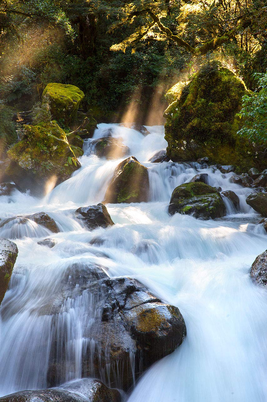 Nature Photography Rushing Brook Colorado Springs Mall with New Photo Print Award Sunbeams