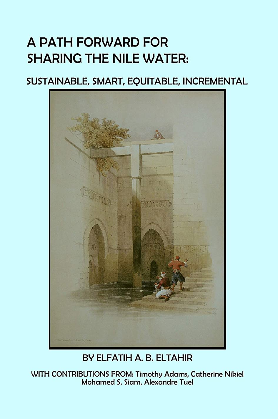 目を覚ます希少性従うA Path Forward for Sharing the Nile Water: Sustainable, Smart, Equitable, Incremental (English Edition)