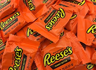 REESE'S Peanut Butter Cups, Milk Chocolate, Snack Size (5 Pounds)