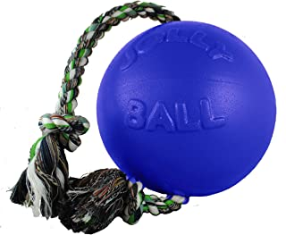 Jolly Pets Romp-n-Roll Rope and Ball Dog Toy