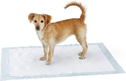 Amazon Basics - Tappetini assorbenti per animali domestici, extra-large