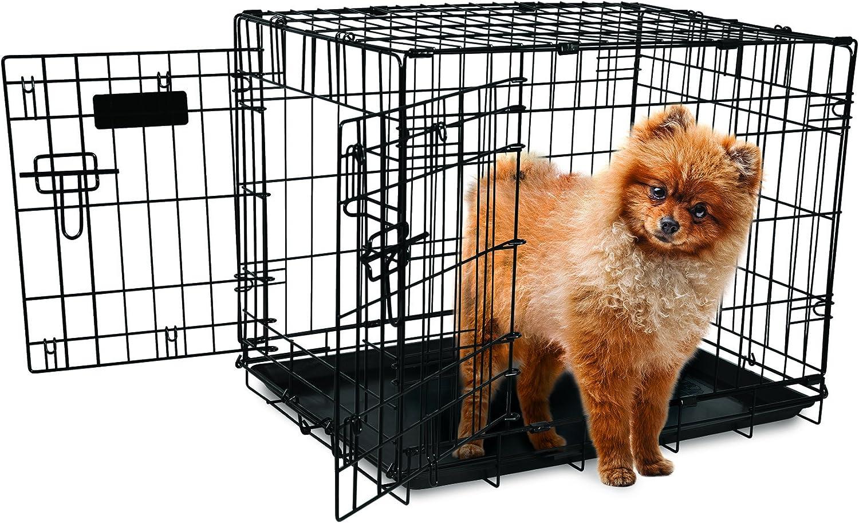 Aspen Pet 24  2 Door Home Training Wire Kennel, 2530 lb