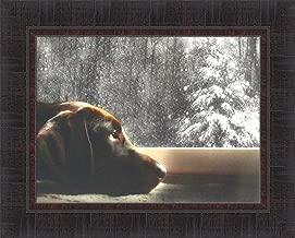 Lobo by Lori Deiter 17x21 Chocolate Lab Labrador Dog Window Snowing Framed Art Print Wall Décor Picture