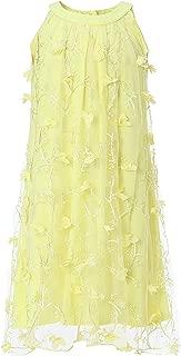 Girl's Embroidered Tulle Halter Dress
