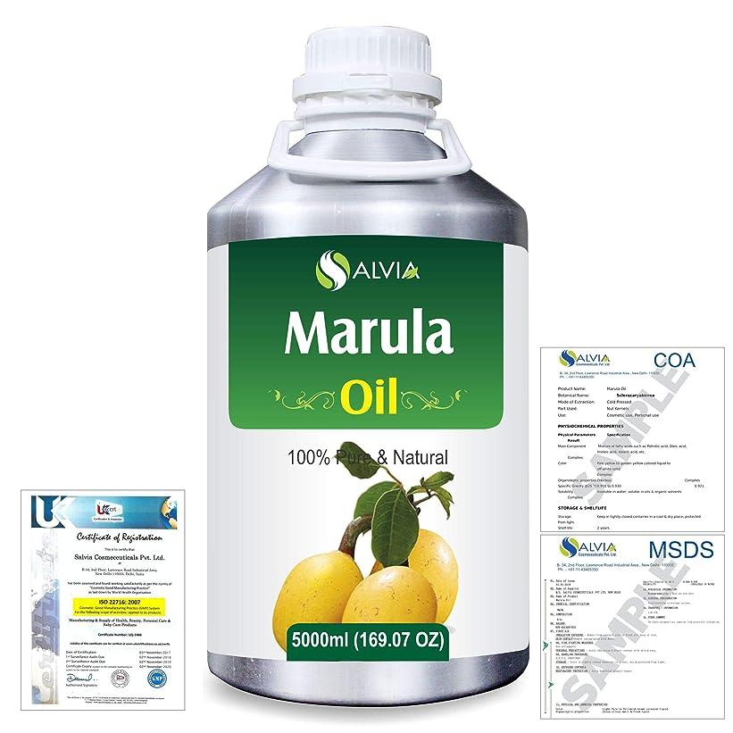 あいさつ絶滅したジュースMarula (Sclerocarya birrea) Natural Pure Undiluted Uncut Carrier Oil 5000ml/169 fl.oz.