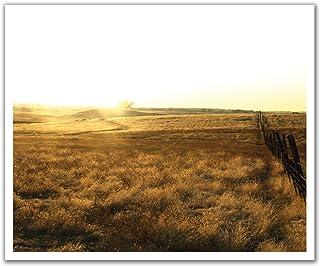 JP لندن poslt2060ustrip Lite قابلة للإزالة ملصق حائط من الفينيل ملصق جداري Wild West من Wild prairies ، 60سم x 19.75-inch