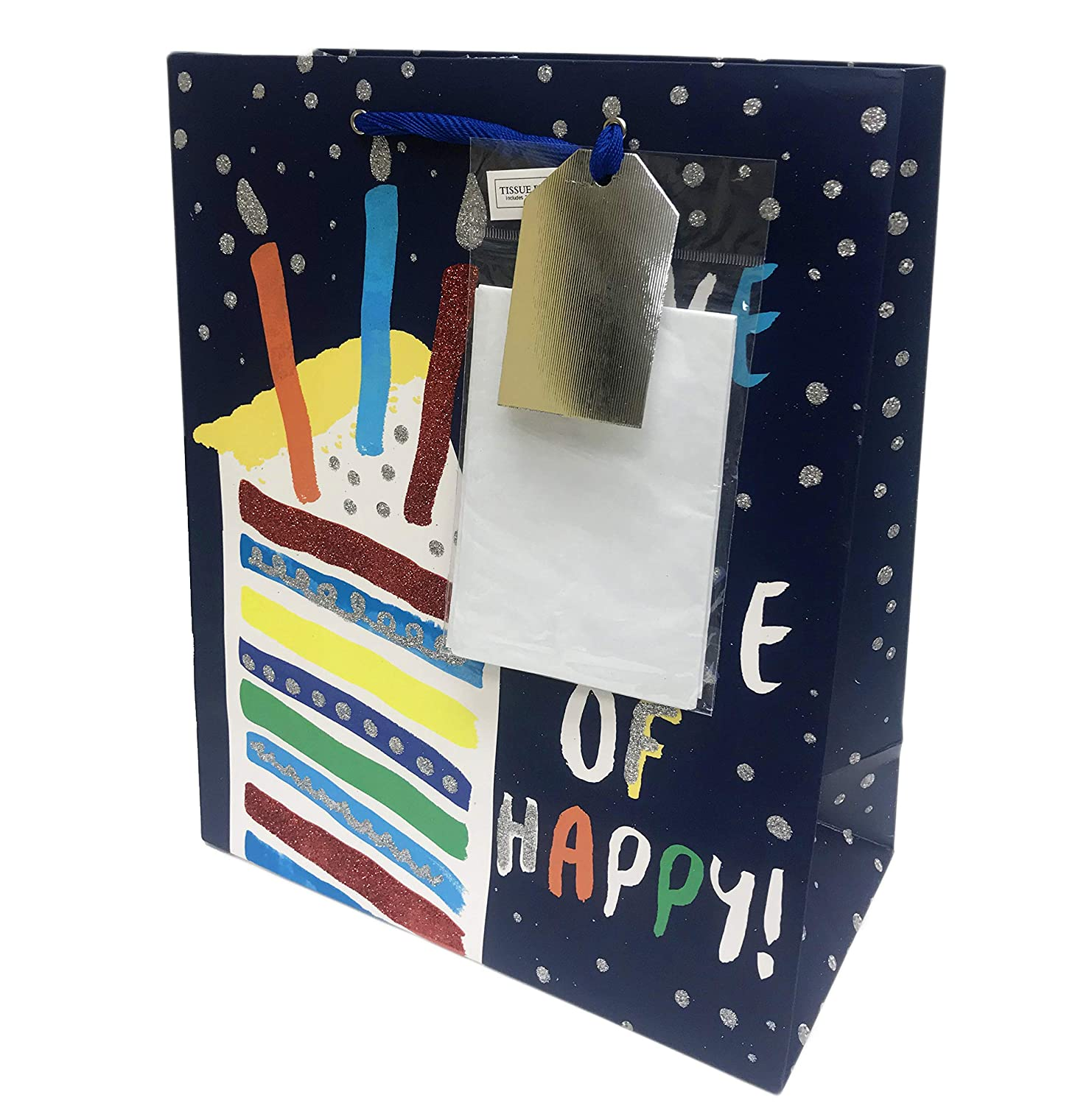 Have a Slice of Happy Colorful Glitter Embellished Layer Cake Novelty Happy Birthday Celebration Gift Bag & Tissue Paper