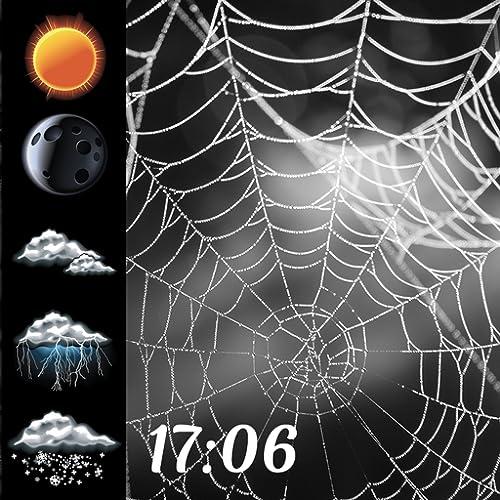 Spinnennetz Uhr & Wetter