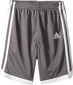 Iconic Mesh Shorts (Toddler/Little Kids)