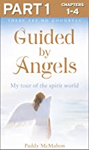 Guided By Angels: Part 1 of 3: There Are No Goodbyes, My Tour of the Spirit World
