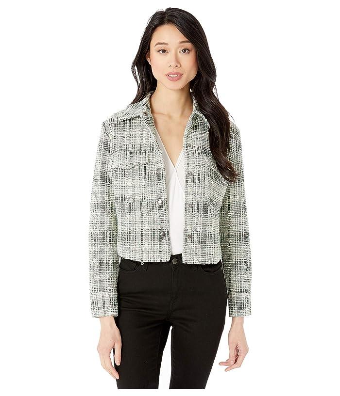 BB Dakota  Lead By Tweed Shirt Jacket (Misty Jade) Womens Clothing