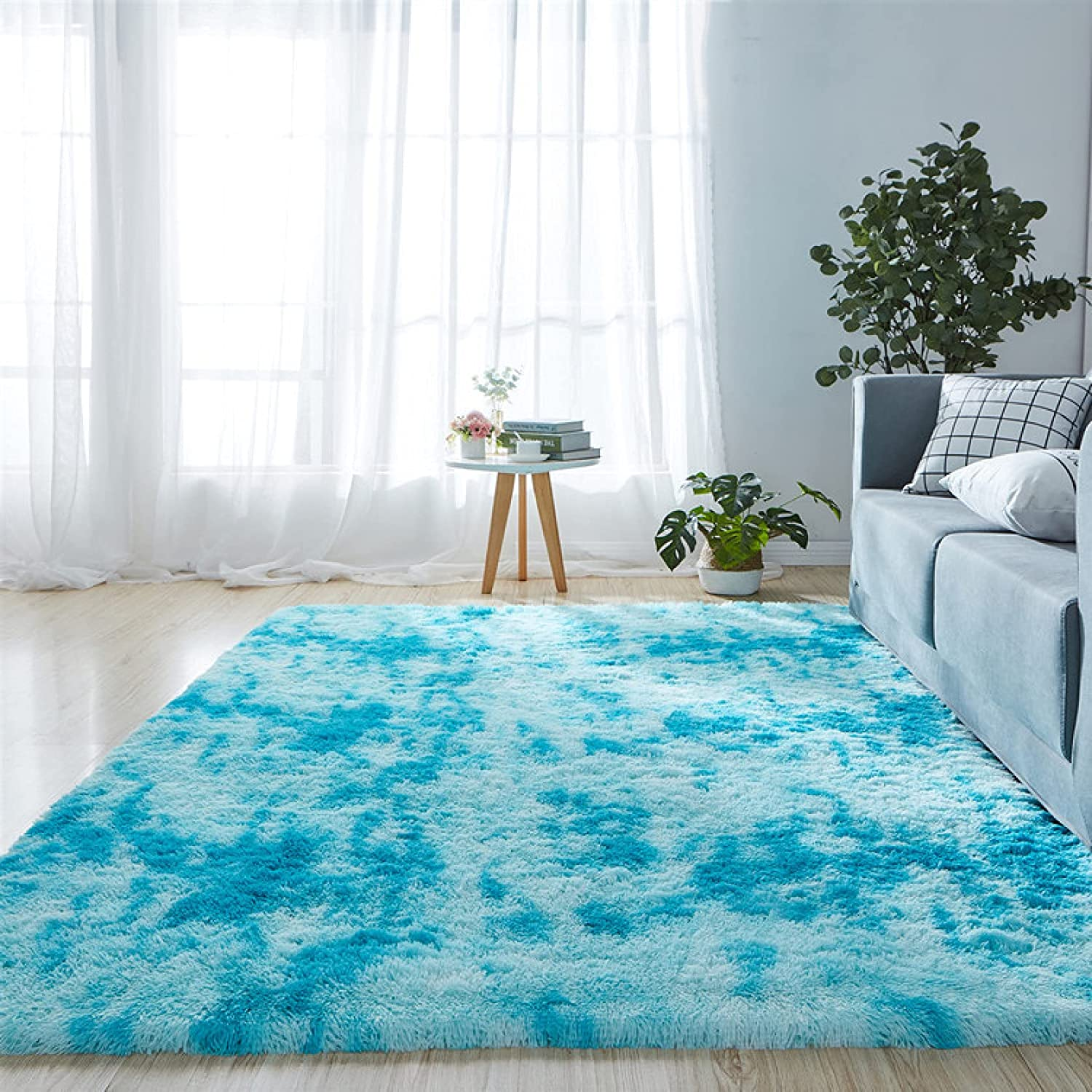 Floor Cheap mail order shopping Modern Indoor Plush Carpets Fuzzy Ca Comfy Decorative Fort Worth Mall Home