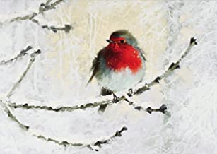 English Robin in Winter Deluxe Boxed Holiday Cards (Christmas Cards, Greeting Cards)