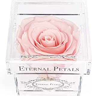 A 100% Real Rose That Lasts A Year - White Gold Solo (Light Pink)
