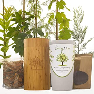 The Living Urn Biodegradable Urn Including a Premium Young Tree of Choice. Grow a Living Tree Memorial from The Cremation Ashes of a Loved One with This Patented Tree Urn.