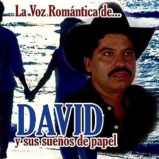 La Voz Romantica De David Y Sus Suenos De Papel