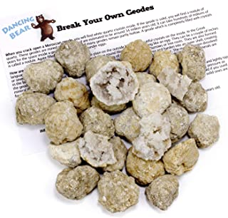"""Dancing Bear 25 Break Your Own Geodes, 90% Hollow-Small ( 1-1.5"""") Open & Discover Amazing Surprise Crystals Inside! Educat..."""