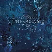 the ocean pelagial