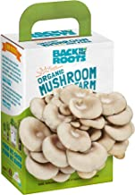 Best mushroom farm back to the roots Reviews
