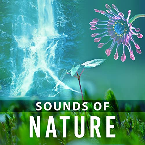 Sounds Of Nature Relaxation Music Nature Sounds Deep Meditation Healing Nature Beautiful Instrumental New Age By Relaxing Music On Amazon Music Amazon Com
