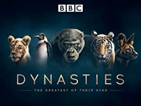Best old dynasty episodes Reviews