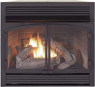 ProCom FBNSD400T-ZC Dual Fuel Ventless Gas Fireplace Insert, 29.5