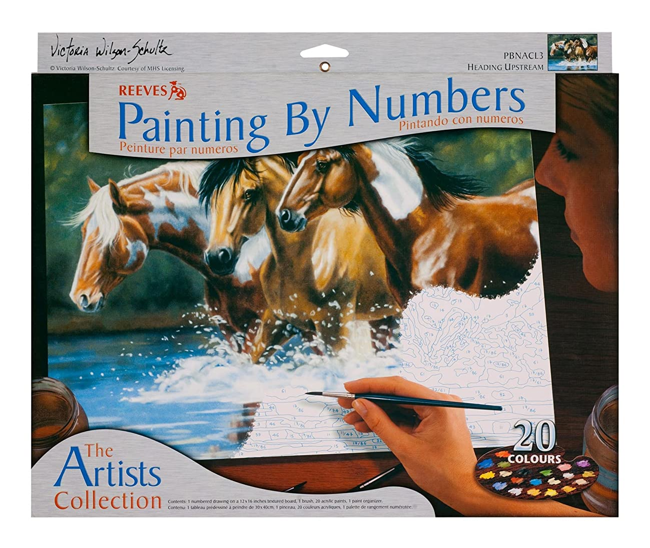Winsor & Newton Reeves 12-Inch by 16-Inch Paint by Number Artists Collection, Heading Upstream