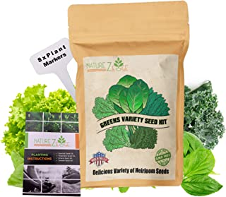 NatureZ Edge Greens 8 Varieties, Seeds for Planting Vegetables, Vegetable Seeds Packs, Lettuce Seeds, Arugula Salad Seeds, Lettuce Seeds for Planting Home Garden, Non-GMO