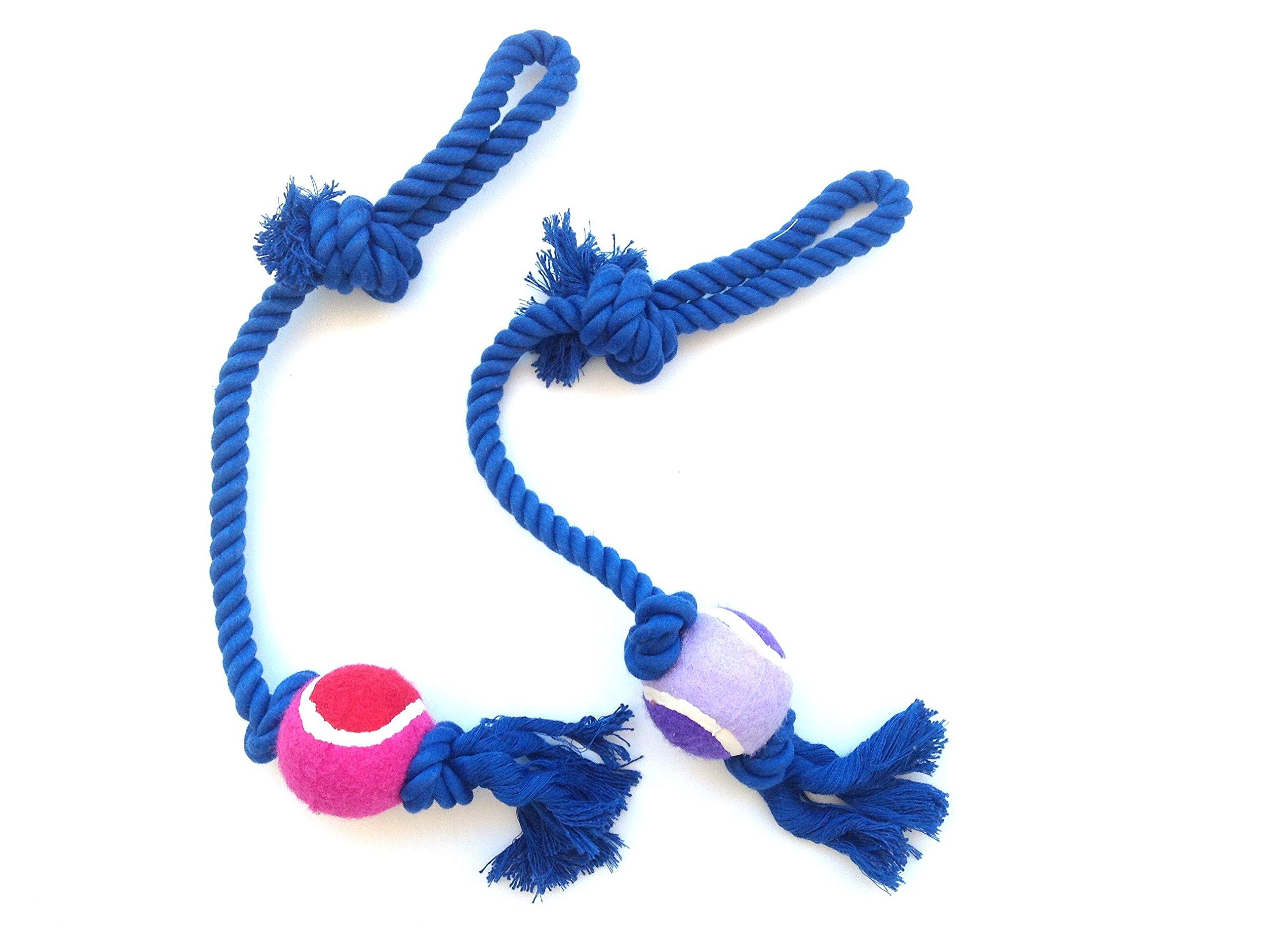 Cuerda con pelota larga 2 pcs para perro mascota: Amazon.es ...