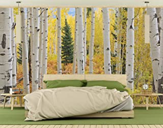Wall Mural on self adhesive wallpaper Photo of Aspen White Birch Forest Elk Mountains Colorado HD DIY 3D Removable Reusable Don't be fooled by cheaper versions 12 Feet Wide by 8 Feet High