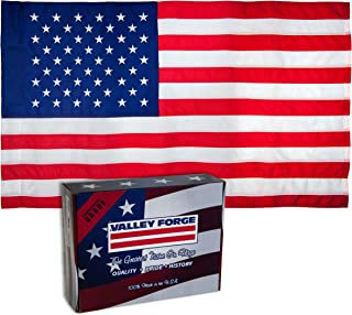 Valley Forge, American Flag, Nylon, 2.5' x 4', 100% Made in USA, Sleeved Flag, Sewn Stripes and Embroirdered Stars (Renewed)