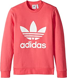 adidas Originals Kids Trefoil Crew (Big Kids)