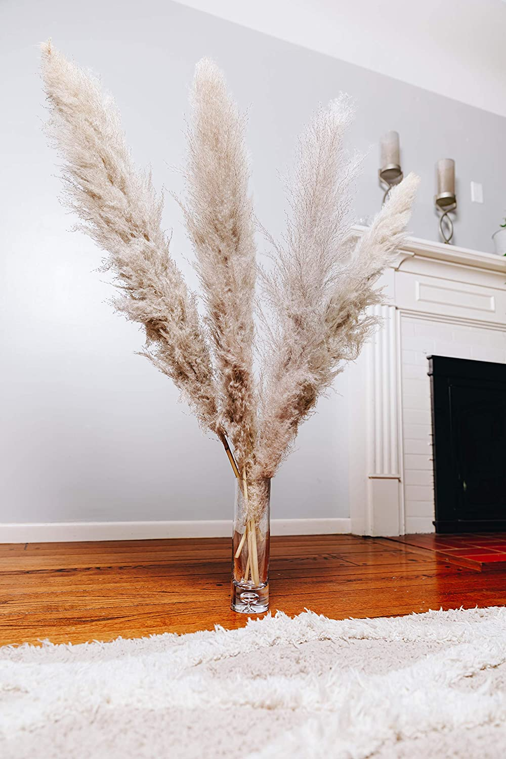 Pampas Grass Large - Natural Dried gift Decor Tall Max 62% OFF Home S for
