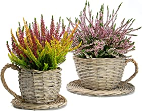 Set of 2 Willow Teacup Planters | Cup and Saucer Plant Pots | Basket Weave Watertight Flower Containers | Perfect Gift | M&W