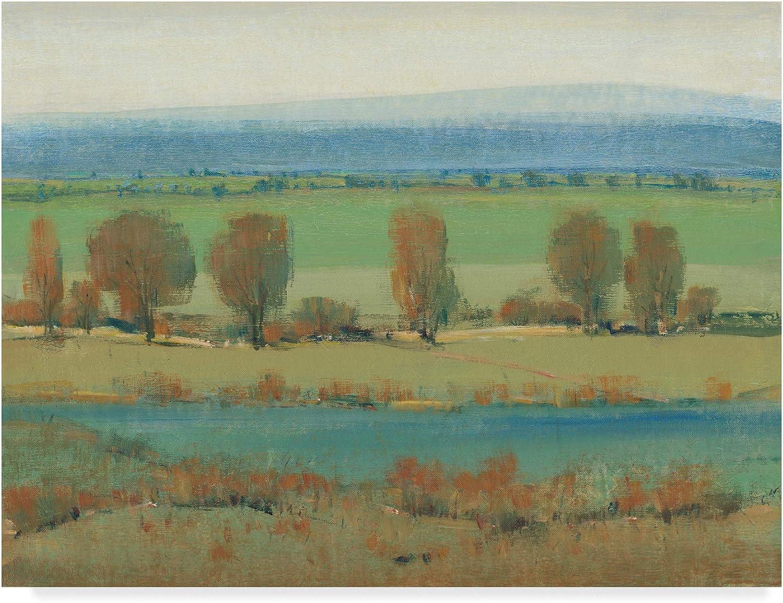 Trademark Fine Art Flat Terrain I by Tim Otoole, 14x19