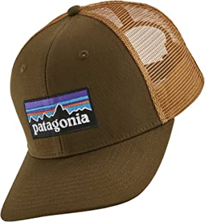 Patagonia P-6 Trucker (Brown, One Size)