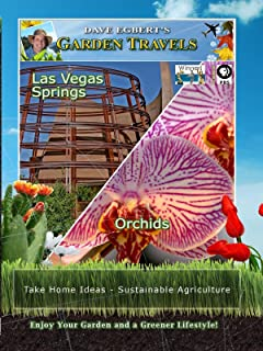 Garden Travels - Las Vegas Springs - Orchids