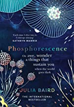 Phosphorescence: On awe, wonder & things that sustain you when the world goes dark