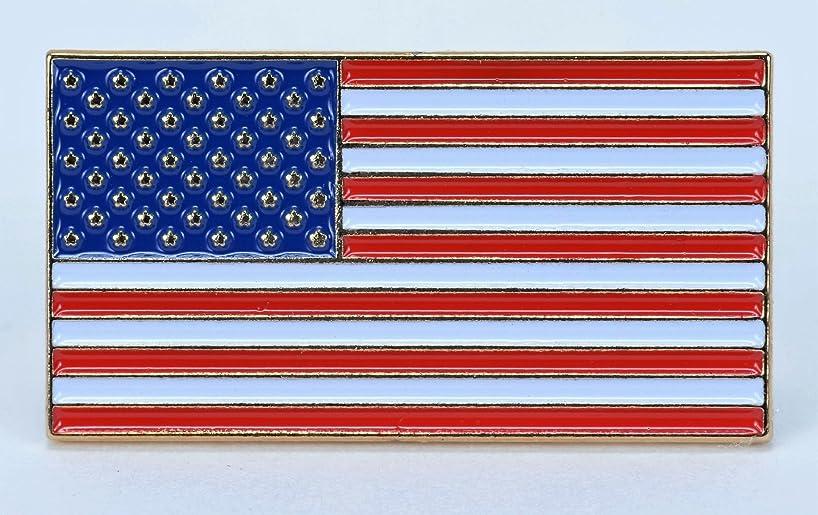 Ten USA Rectangular Flag Lapel Pins