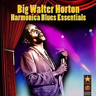 Harmonica Blues Essentials