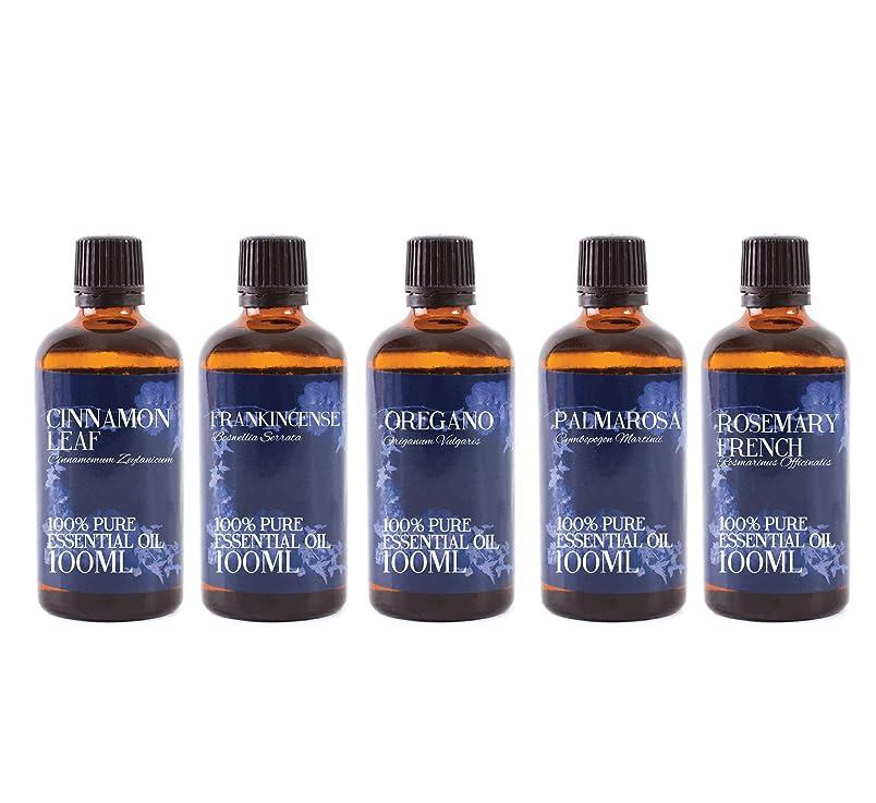 立ち寄るぶら下がる磁石Mystic Moments   Gift Starter Pack of 5 x 100ml - Yang - Essential Oils