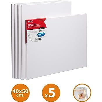 Pack 5 Lienzos Pre-estirados Lienzos para Pintar 40x50cm Lienzo Blanco Algodon 100% para Pintura Acrilica, Oleo y Técnica Mixta   Artix PRO: Amazon.es: Hogar