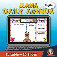 Llama Digital Morning Meeting and Agenda Slides
