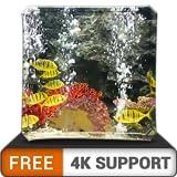 acquario pacifico gratuito hd: decora la tua stanza con un bellissimo acquario marino sulla tua tv hdr 4k, tv 8k e dispositivi di fuoco come sfondo, decorazione per le vacanze di natale, tema per la m