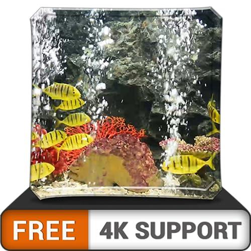 Kostenloses friedliches Aquarium HD - Dekorieren Sie Ihr Zimmer mit einem wunderschönen Aquarium für Meereslebewesen auf Ihrem HDR 4K-Fernseher, 8K-Fernseher und Feuergeräten als Hintergrundbild, Deko